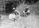 ETH-BIB-Jäger mit geschossener Pferdeantilope-Kilimanjaroflug 1929-30-LBS MH02-07-0367.tif