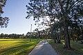 Earlwood NSW 2206, Australia - panoramio (11).jpg