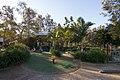 Earlwood NSW 2206, Australia - panoramio (16).jpg