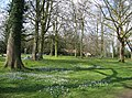 Early spring on The Backs - geograph.org.uk - 784861.jpg