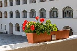 Eberndorf Stiftsgebäude N-Trakt 1. Stock Arkaden Pelargonien 28082018 4332.jpg