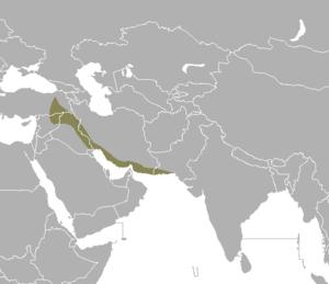 Syrian elephant - Range of Elephas maximus asurus.