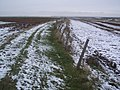 Embankment beside a dyke in Allhallows Marshes - geograph.org.uk - 1628408.jpg
