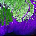 Embouchure du Gange.jpg
