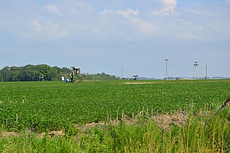 Illinois Basin - Pumpjacks operating in White County, Illinois