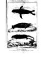Encyclopedie volume 5-041.png
