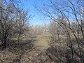 Engels, Saratov Oblast, Russia - panoramio (27).jpg