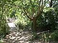 Entorn de la Font de Baldiri, Monistrol de Montserrat (juliol 2011) - panoramio.jpg