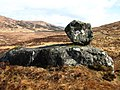 Erratic, Kinloch Glen - geograph.org.uk - 153460.jpg