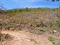 Estrada Macaúbas - Espinosa - panoramio.jpg