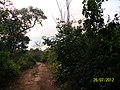 Estrada de Acesso ao Baixão - panoramio.jpg