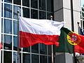 European Flags (4627306406).jpg