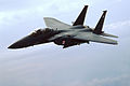 F-15E Strike Eagle 4th Fighter Wing.JPG