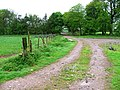 Farm Track to Hawksnest - geograph.org.uk - 169576.jpg