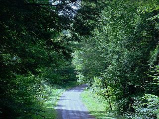 Farmington Township, Tioga County, Pennsylvania Township in Pennsylvania, United States