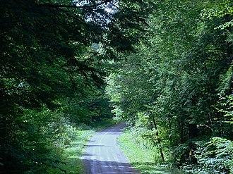 Farmington Township, Tioga County, Pennsylvania - McCollum Road in Farmington Township