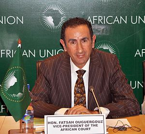 Fatsah Ouguergouz - Judge and Vice-President of the African Court of Human and Peoples'Rights (Arusha, Tanzania)