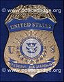 Federal Air Marshal police badge.jpg