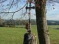 Feldkreuz auf den Schweineberg - panoramio.jpg