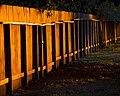 Fence Line at Sunset (5213052666).jpg