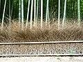 Fence in Japan 09.jpg