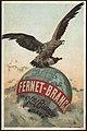 Fernet-Branca, Dei Fili Branca, Milano (front) - 8201067460.jpg
