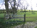 Field Gate and Hedge Lines - geograph.org.uk - 364030.jpg