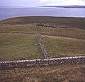 Fields near Dunnet Head - geograph.org.uk - 619377.jpg