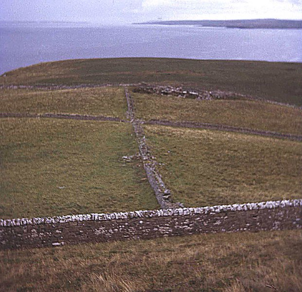 File:Fields near Dunnet Head - geograph.org.uk - 619377.jpg