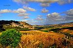 Fields of gold (15941003812).jpg