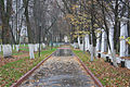 File by Alexander Baranov - . (10520813063).jpg