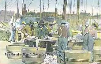 Gloucester, Massachusetts - Fish Dressing Wharf c. 1908
