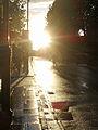 Flickr - Duncan~ - Old Brompton Road.jpg