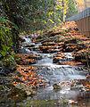 Flickr - Nicholas T - Roadside Falls.jpg