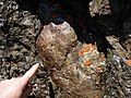Flickr - brewbooks - Interesting Geology near Welch Peak (3 of 3).jpg