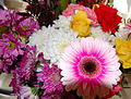 Flickr - ronsaunders47 - BEAUTIFUL BLOOMS. 1.jpg