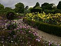 Flower garden - geograph.org.uk - 1550857.jpg