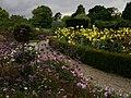 Flower garden - geograph.org.uk - 1550857.jpg