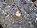 Folded magnetite-quartz meta-iron formation (Goldman Meadows Formation, Mesoarchean, 2.87 Ga; Atlantic City Iron Mine, Wind River Range, Wyoming, USA) 2 (21199963065).jpg
