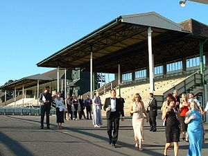 Fontwell Racecourse. Grandstand on Eastern side