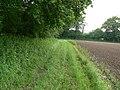 Footpath along edge of field - geograph.org.uk - 821282.jpg