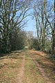 Footpath east of Tufton Warren Farm - geograph.org.uk - 332367.jpg