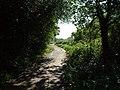Footpath from Hayes to Locksbottom BR2 - geograph.org.uk - 44170.jpg