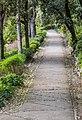 Footpath in Jardins de la Fontaine in Nimes 02.jpg