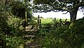 Footpath stile out Bowl Rock. - panoramio.jpg
