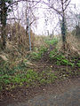 Footpath to Revels Field - geograph.org.uk - 299368.jpg