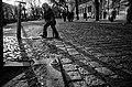 For Cleaner Bratislava (7661498).jpeg
