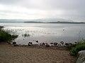Frøylandsvatnet.JPG