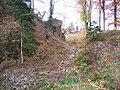 France Otrott Kagenfels castle - Moat.jpg