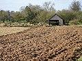 Freshly ploughed land - geograph.org.uk - 1220201.jpg